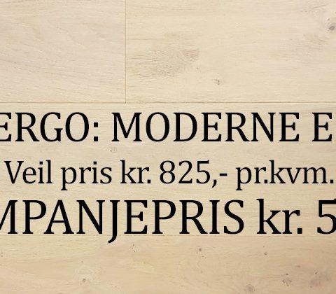 Moderne Eik