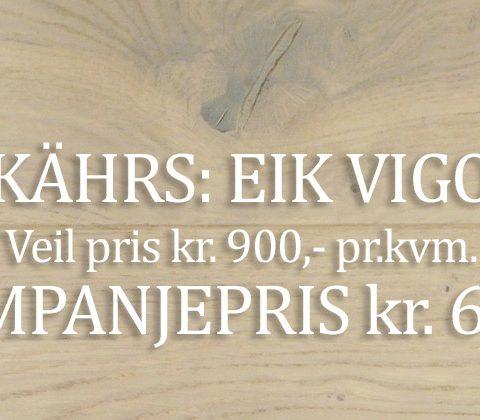 Eik Vigo